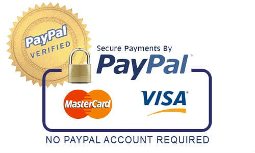Pay Invoice through Paypal