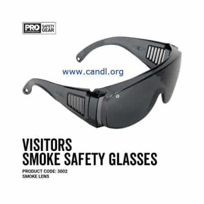 Visitors Safety Glasses Clear Lens - ProChoice® - 3002