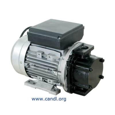 DITI17320400 - 240 Volt High Volume Gear Oil Pump