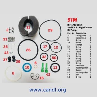 DITI171305SK - 5:1 High Volume Oil Pump Seal Kit