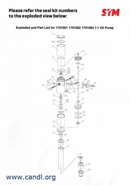 DITIS1701001K - 1:1 Air Pump Seal Kit