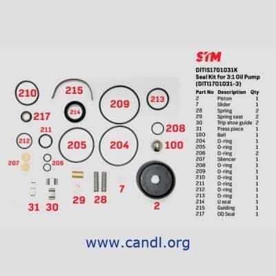 DITIS1701031K - 3:1 Air Pump Seal Kit